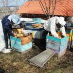 Подставляем мёд