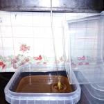 Электропроводность мёда на практике