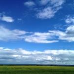 Небо и рапс