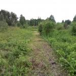 Элкетроизгородь
