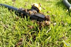 Весной пчелам необходима вода для выращивания расплода