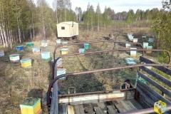 Первая машина пчёл, 48 семей