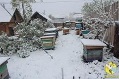 Выпал снег. Вид 2. 18 мая