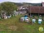 Сентябрь, 2010. Пчёлы едут домой