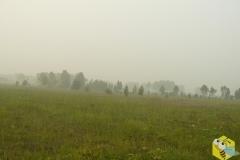 Дым на лугах