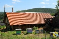 Покрасили крышу новому омшанику. На переднем плане рои 2013 года