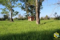 Место кочевой пасеки