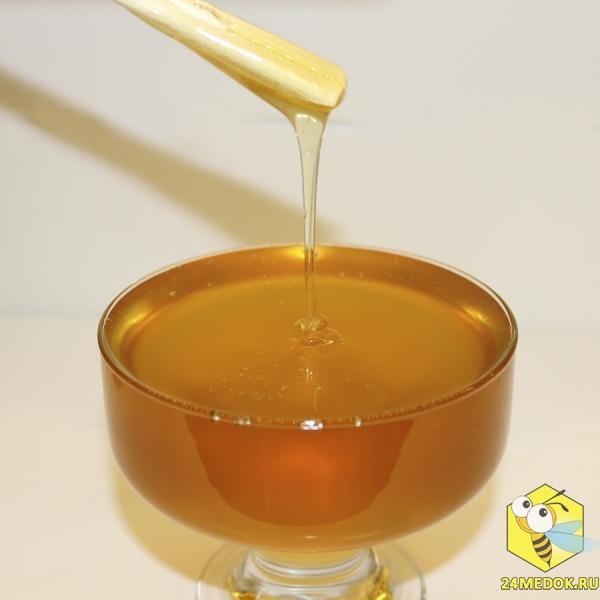 Васильковый мёд. Пасека Старчевских