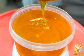 Мёд с василька перистого с пасеки Старчевских