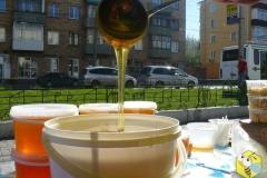 Наш сибирский Мёд