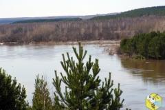Паводок. Разлилась река Чулым