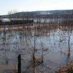 Затопленные огороды