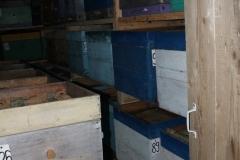 Омшаник в с.Красный Завод (фото 3)