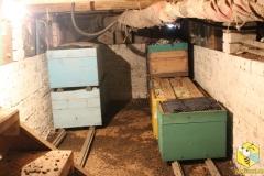 Омшаник в подполье, на 60+ п.с.