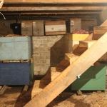 Омшаник в подполье, лестница