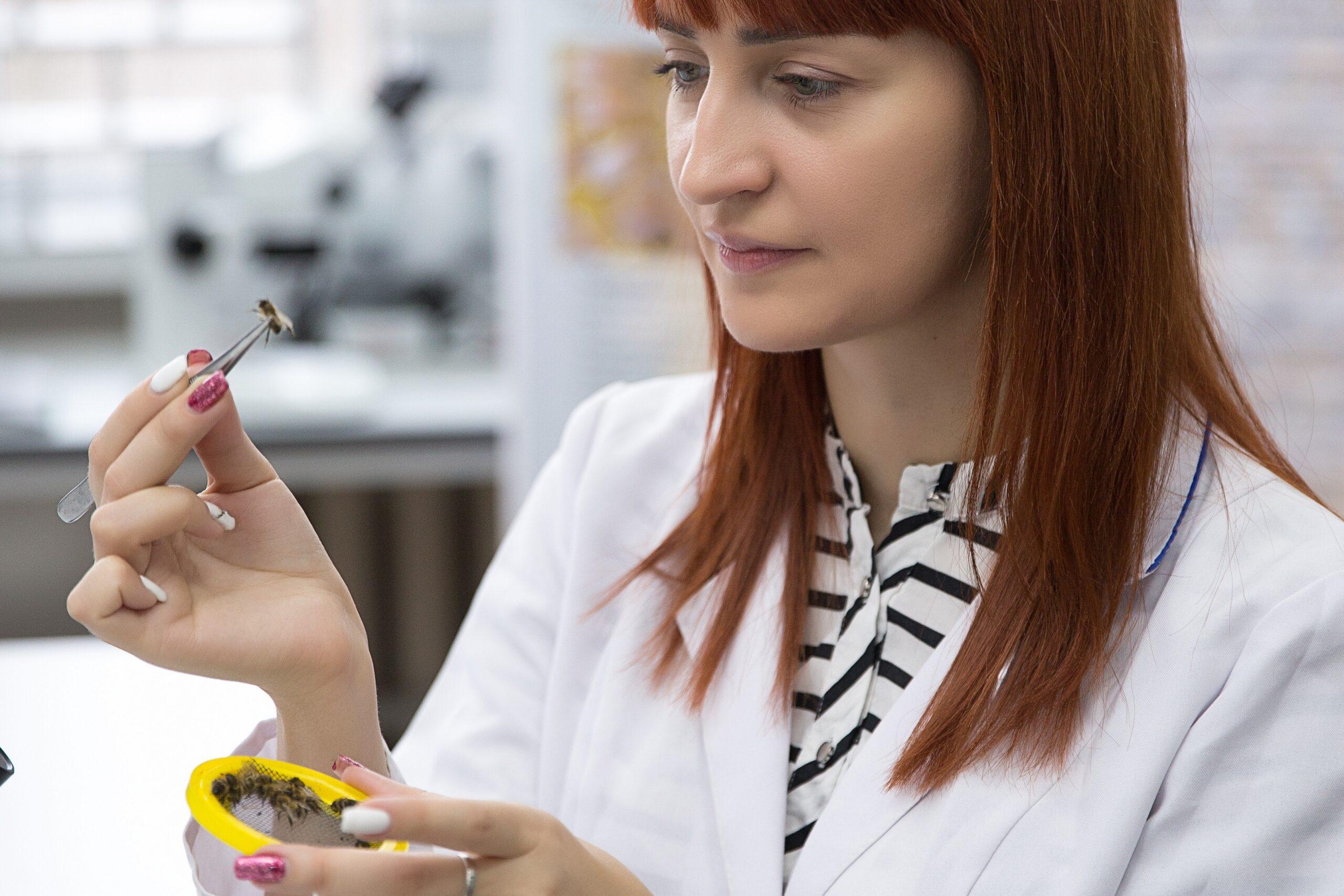 Ученые КФУ получили грант на изучение диких пчёл полуострова Крым