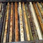 Рамочки на сотовый мёд