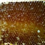 В одной рамке разный мёд