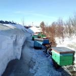 Снежный занос