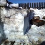 Сам бы снег таял еще недели две