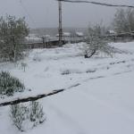 Снег на огороде. 18 мая