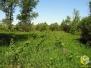 Июнь, 2010. Выбор места кочевой пасеки