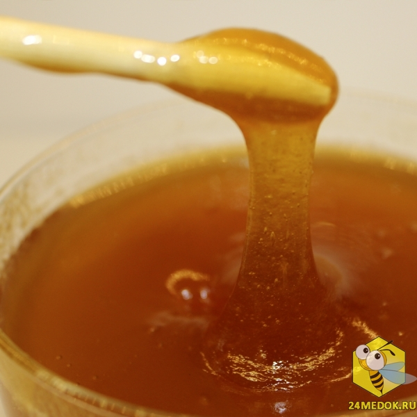 Таежный мёд (болотный). Пасека Старчевских