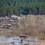 Деревня Красный Завод, левый берег