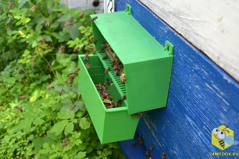 Пыльцеуловитель для сбора пыльцы