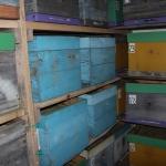 Второй омшаник в с.Красный Завод (фото 1)