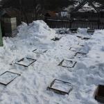 Под снегом местами лужи