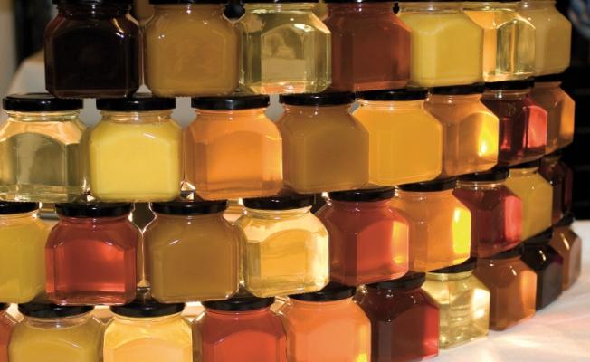 Как определить качественный мед на рынке с первого взгляда