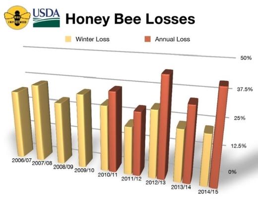 Гибель пчел в США