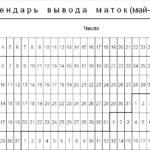 Таблица вывода маток