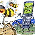 Опасные ли мобильные для пчел?