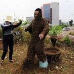 Китайца облепили 300 тысяч пчел