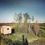 """Последний день кочевки 2017 года. В этом году к концу медосбора местные фермеры принялись распахивать свои заброшенные поля, на которых уже успели вырасти 4х метровые березы, сосны. Усилиями трёх новеньких кировцев за 2 недели круглосуточной работы было """"уничтожено"""" более 5000 Га пчелиного """"пастбища"""". Много пчел попало под трактора, по нашим подсчетам, не менее 1кг лётных пчел с каждой семьи. Пару тонн мёда из-за этой неприятности мы, конечно, потеряли.  Но вывезти пчел не было возможности, т.к. о планах фермеров мы узнали лишь 10 июля, а улья к этому времени уже были нетранспортабельны.  Вот так :) #2017 #медосбор #сезон #пчеловодство #пасека #кочевка #bee #beehoney #beekeeping #24honey #24medok #wagon #вагон #бытовка #Сибирь #siberia"""