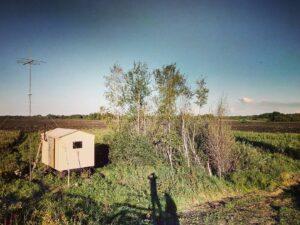 Последний день кочевки 2017 года. В этом году к концу медосбора местные фермеры принялись распахивать свои заброшенные поля, на которых уже успели вырасти 4х метровые березы, сосны. Усилиями трёх новеньких кировцев за 2 недели круглосуточной работы было уничтожено более 5000 Га пчелиного