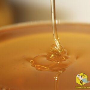 Васильковый мёд с пасеки Старчевских