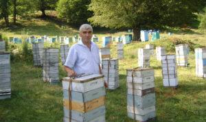 Пчеловодство в Азербайджане, 2016. «Made in Azerbaijan»