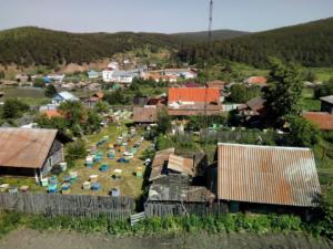 Пасека в Июле, 2018