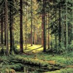 "Картина ""Хвойный лес"""