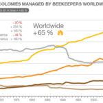 Динамика развития пчеловодства в мире