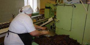 Завод по переработки продуктов пчеловодства в Китае (видео)