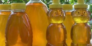 Как продать мёд? Проблемы сбыта