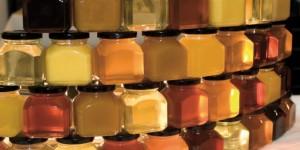 Глава 6. Сорта мёда