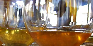 Дегустация мёда в Италии