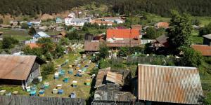 Продажа свежего мёда 2018 в Красноярске