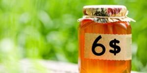 Пчеловоды Восточного Казахстана продают мёд по курсу доллара