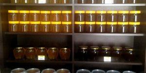 Медовый месяц: «Луговой мёд нового урожая со скидкой»